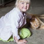 Die Katzen auf Git Holmecke mögen Kinder