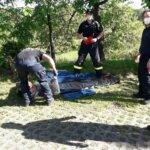Stromausfall: Feuerwehr-Team hilft auf Gut Holmecke